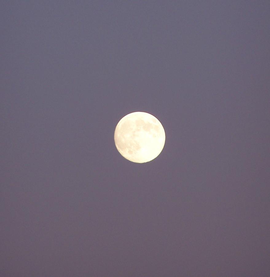 Blue Moon Juli 2015 © Siat